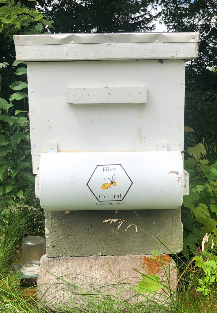Bee Shield