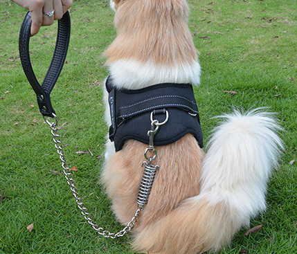 Dogizo dog harness