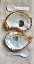 Load image into Gallery viewer, Gold Oyster Shell Salt & Pepper Cellars