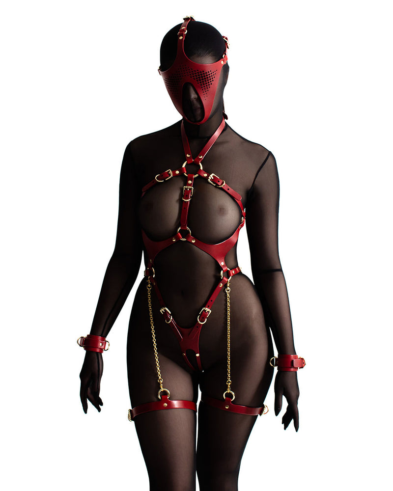 anoeses leather fetish mask and harness