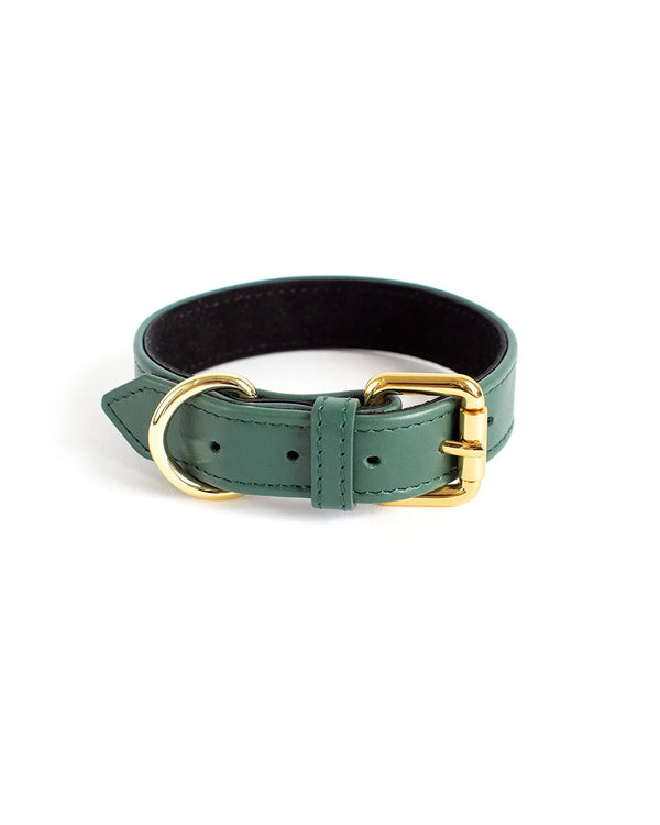 leather choker green