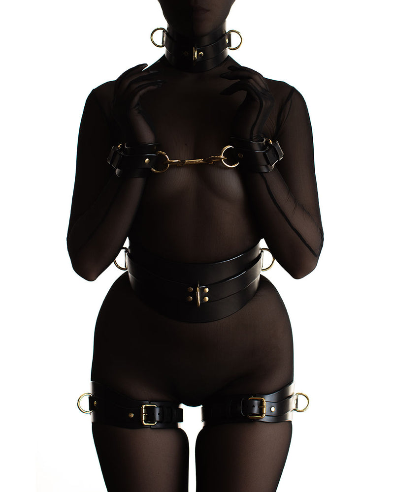 Anoeses leather restraint bdsm set