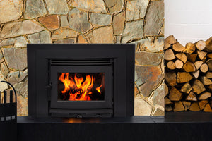 Pacific Energy Neo 2.5 Insert Wood Fire