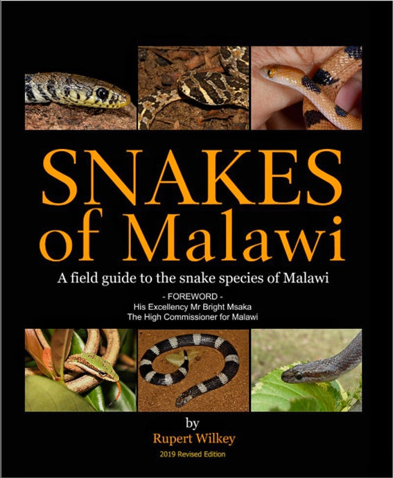 Snakes of Malawi - (Softcover)