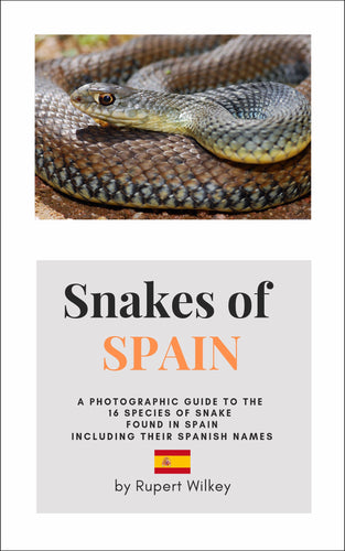 Snakes of Spain (softcover)