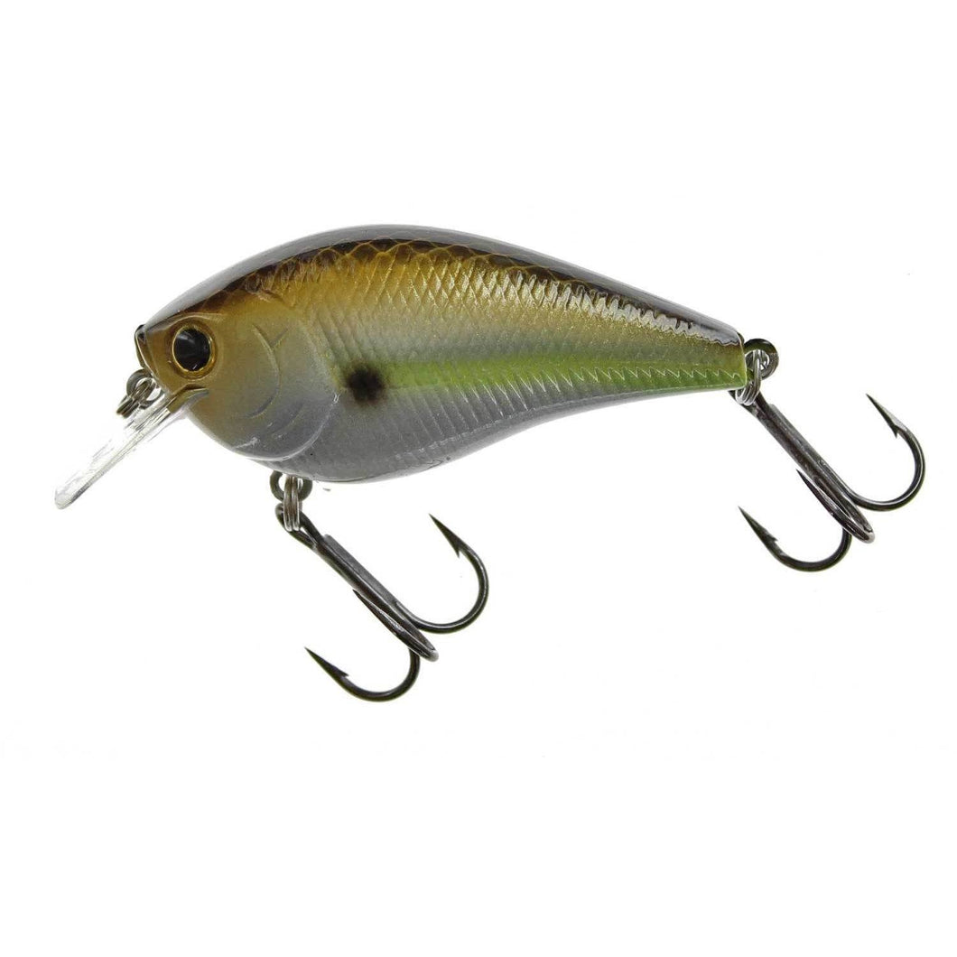Lucky Craft LC 1.5 Gizzard Shad