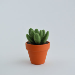 Small Felt Succulent in Jade