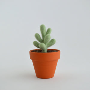 Small Felt Succulent in Mint