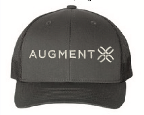 Augment Skis Cap