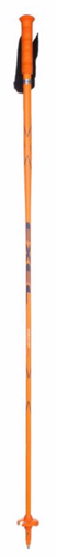Exel World Cup Racing 100% Carbon HS Poles