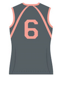 Ace Ladies Volleyball Jersey