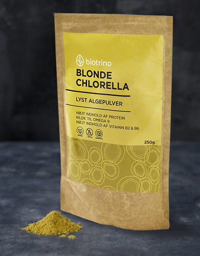 Blonde Chlorella