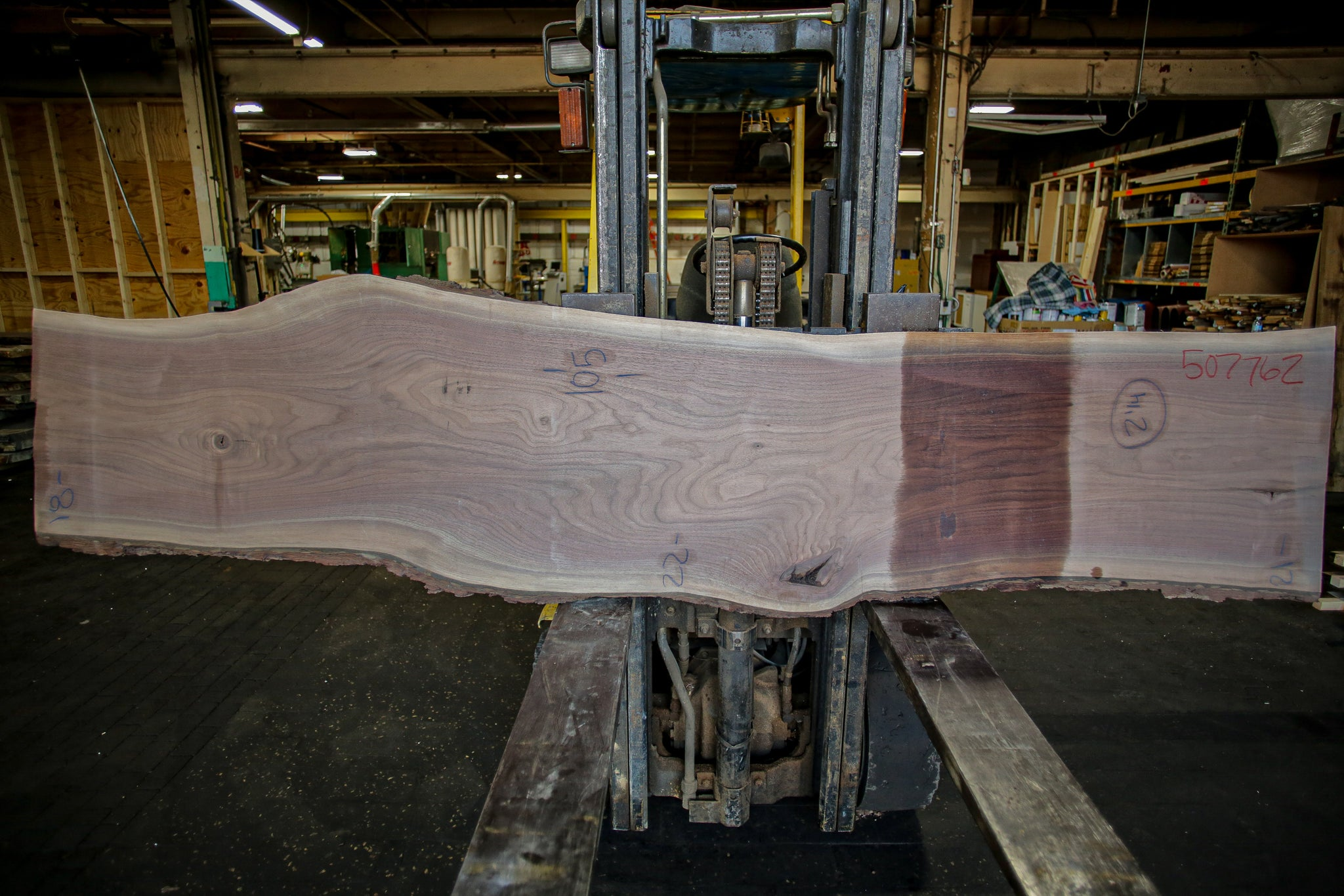 Walnut Live Edge Slab 507762