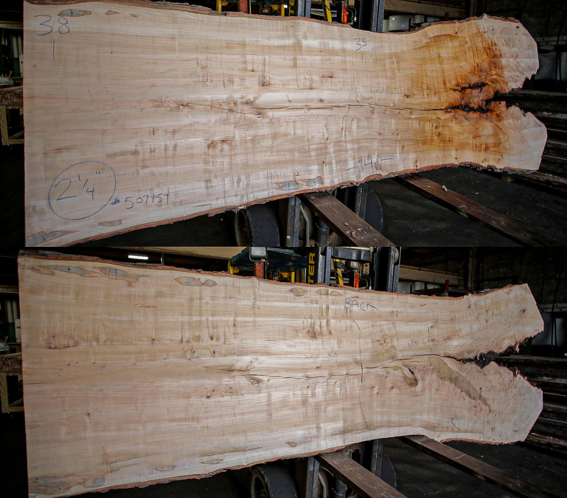 Maple Live Edge Slab 507159