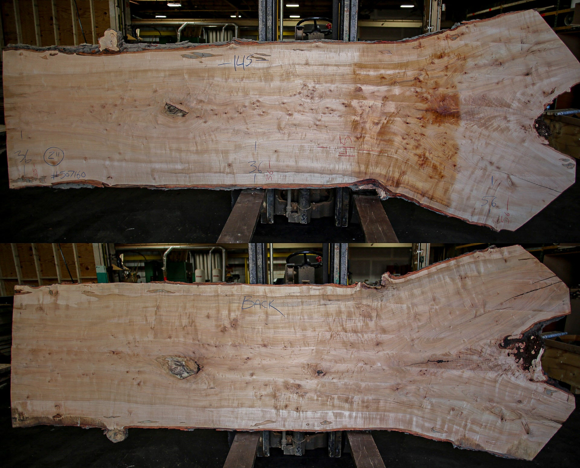 Maple Live Edge Slab 507160