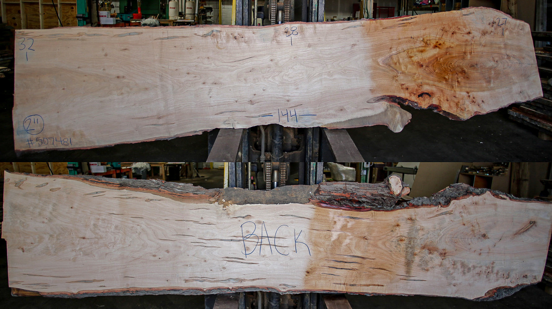 Maple Live Edge Slab 507481