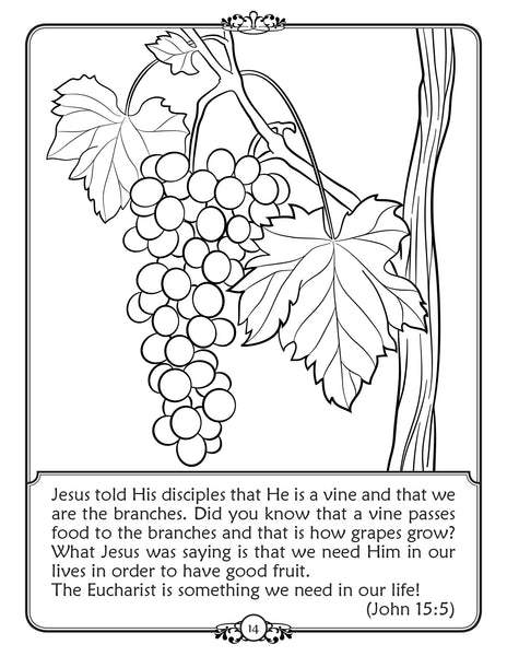What is Holy Communion - Walking in Faith Catholic coloring book - the vine