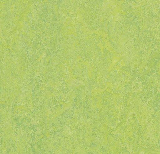 Marmoleum Modular Tile - Refreshing Green