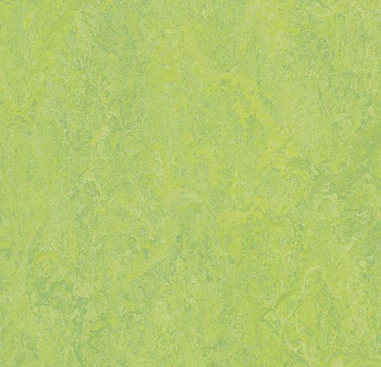 Marmoleum Modular Tile - Refreshing Green B&R: Flooring & Carpeting Forbo USA