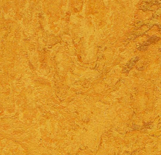 Marmoleum MCS - Golden Sunset - 3125 B&R: Flooring & Carpeting Forbo USA