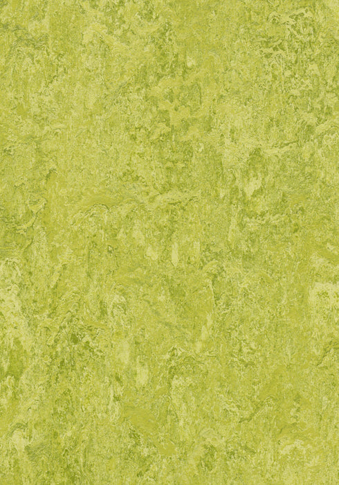 Marmoleum Decibel Sheet Real - Chartreuse B&R: Flooring & Carpeting Forbo USA