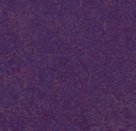 Marmoleum Modular Tile - Purple t3244 B&R: Flooring & Carpeting Forbo USA