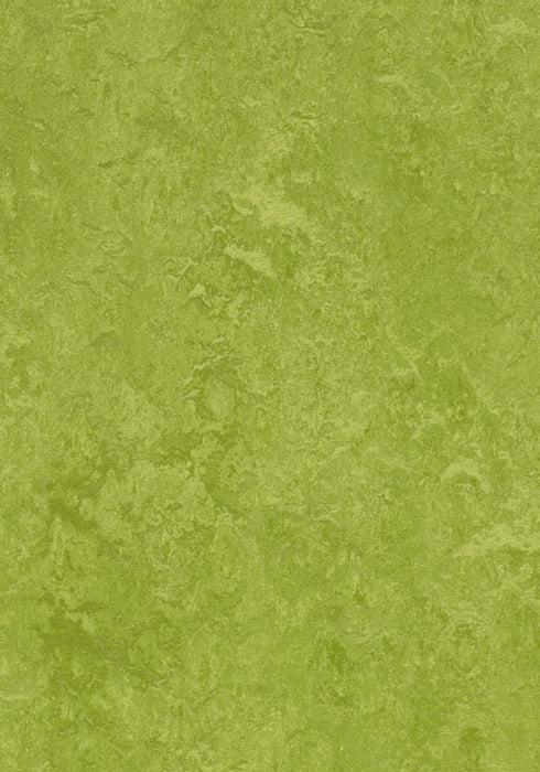Marmoleum Composition Tile (MCT) - Green 3247 B&R: Flooring & Carpeting Marmoleum