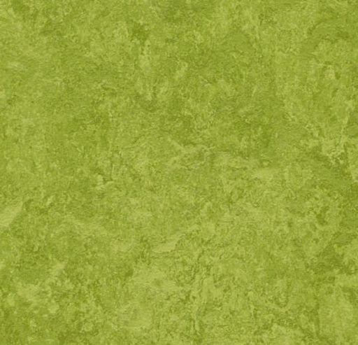 Marmoleum Composition Tile (MCT) - Green 3247
