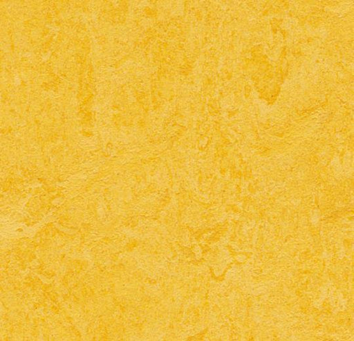 Marmoleum Click Cinch LOC Panel - Lemon Zest 933251 B&R: Flooring & Carpeting Marmoleum