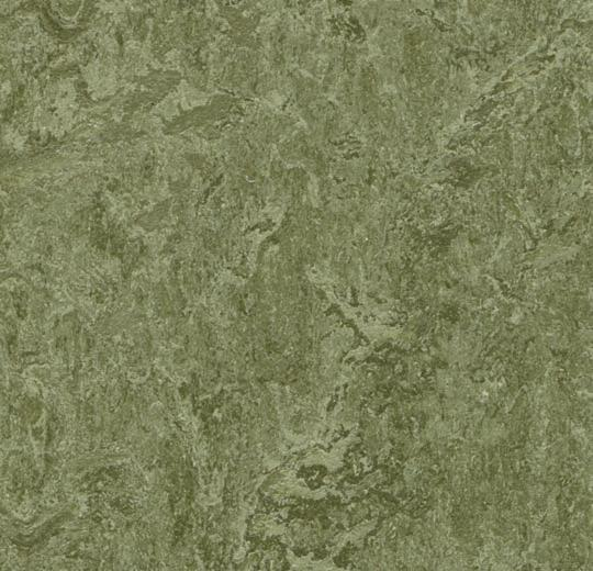 Marmoleum Click Cinch LOC Panel - Pine Forest 933255