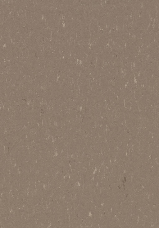 Marmoleum Composition Tile (MCT) - Otter 3631 B&R: Flooring & Carpeting Marmoleum