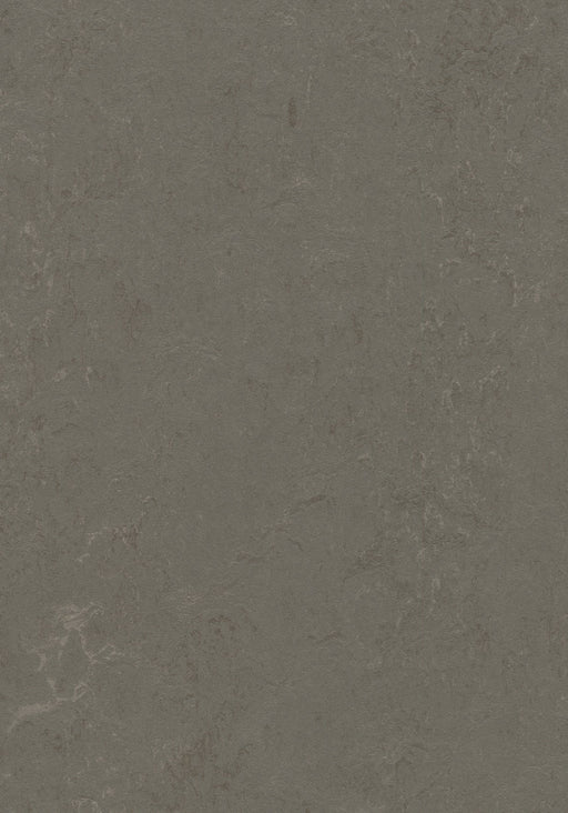 Marmoleum Decibel Sheet Concrete - Nebula B&R: Flooring & Carpeting Forbo USA