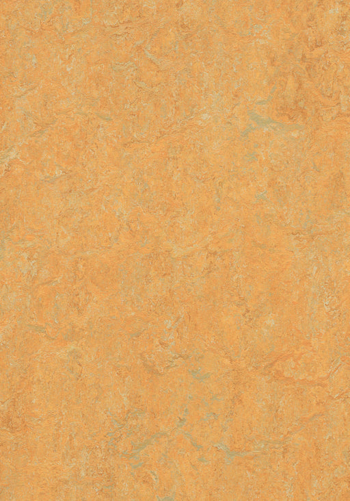Marmoleum Composition Tile (MCT) - Golden Saffron 3847