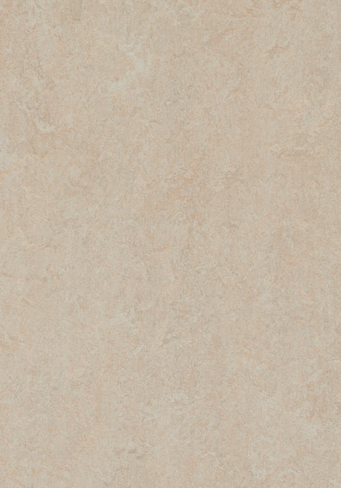 Marmoleum Sheet Fresco - Silver Birch