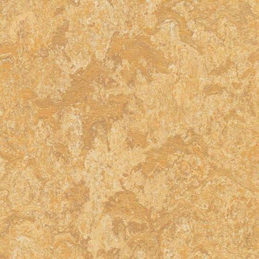 Marmoleum Click Cinch LOC Panel - Van Gogh 933173 B&R: Flooring & Carpeting Marmoleum