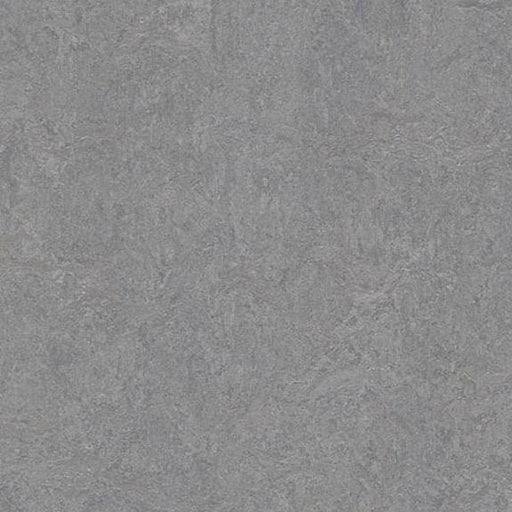 Marmoleum Click Cinch LOC Panel - Eternity 933866 B&R: Flooring & Carpeting Marmoleum