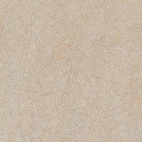 Marmoleum Click Cinch LOC Square - Silver Birch  333871