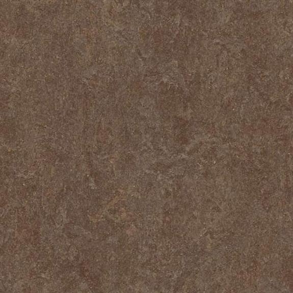 Marmoleum Click Cinch LOC Square - Walnut 333874 B&R: Flooring & Carpeting Marmoleum