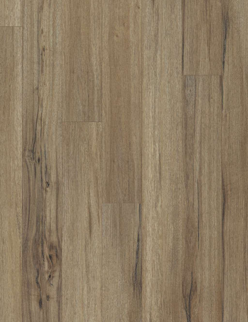 "COREtec Plus 5"" Plank - Baywood Oak - VV023-00503 B&R: Flooring & Carpeting USFloors"