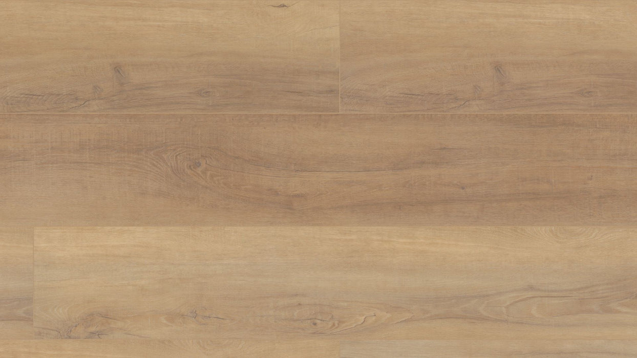 "COREtec Pro Plus HD 9"" - Canterbury Elm - VV488 - 02093 B&R: Flooring & Carpeting USFloors"