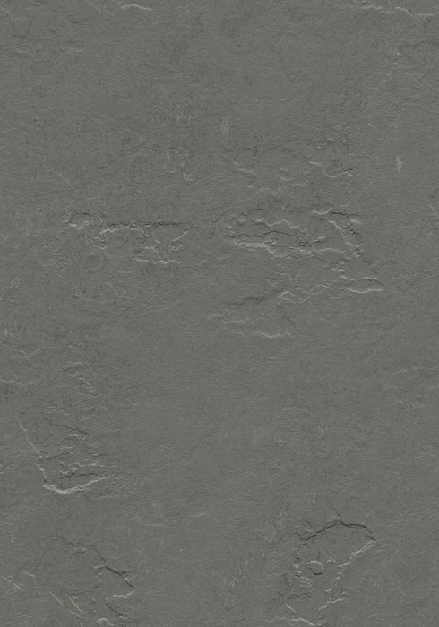 Marmoleum Sheet Slate - Cornish Grey B&R: Flooring & Carpeting Forbo USA