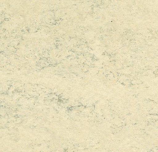 Marmoleum Composition Tile (MCT) - White Birch 3050