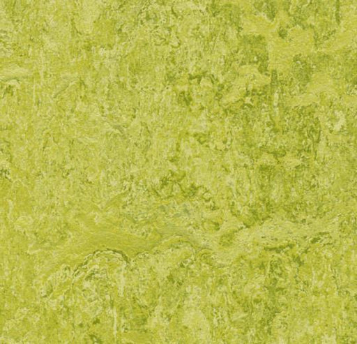 Marmoleum Click Cinch LOC Panel - Chartreuse 933254 B&R: Flooring & Carpeting Marmoleum