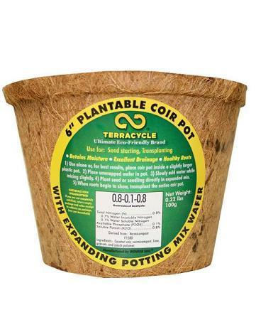 "Plantable Coir Pot (6"") - Set of 6 H&G: Gardening TerraCycle"