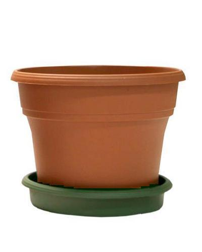 "TerraCycle Recycled Pot & Saucer - 6"" Two-Tone, Set of 4 H&G: Gardening TerraCycle"