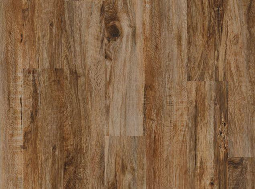 "COREtec Plus 5"" Durban Oak - VV023-00511 B&R: Flooring & Carpeting USFloors"