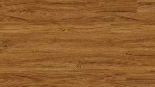 COREtec One Adelaide Walnut 50LVP805 B&R: Flooring & Carpeting USFloors