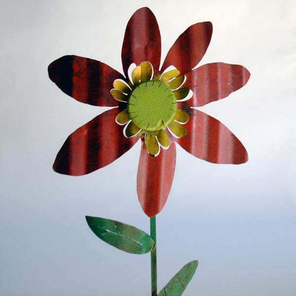 Zinnia on Stalk
