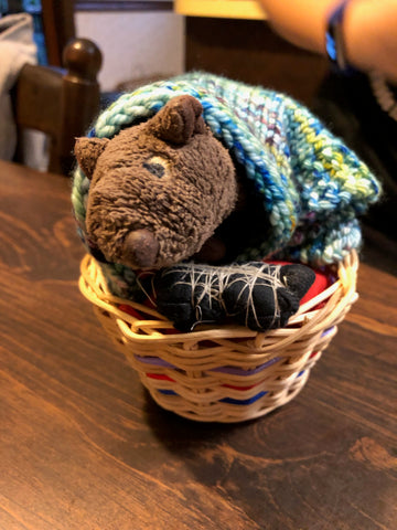 Humphrey in his basket bed with hand knit Jilly & Kiddles blanket