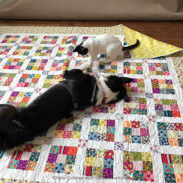 Ninth Square- strip quilt with puppy and cat playing on it